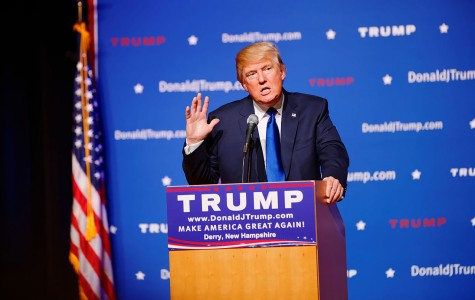 Trumping the Competition Despite the Odds